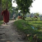 210村に向かう途中の風景2
