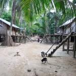 038ナランギリボリバラ村(2010年撮影)