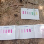 寺院池テスト結果1