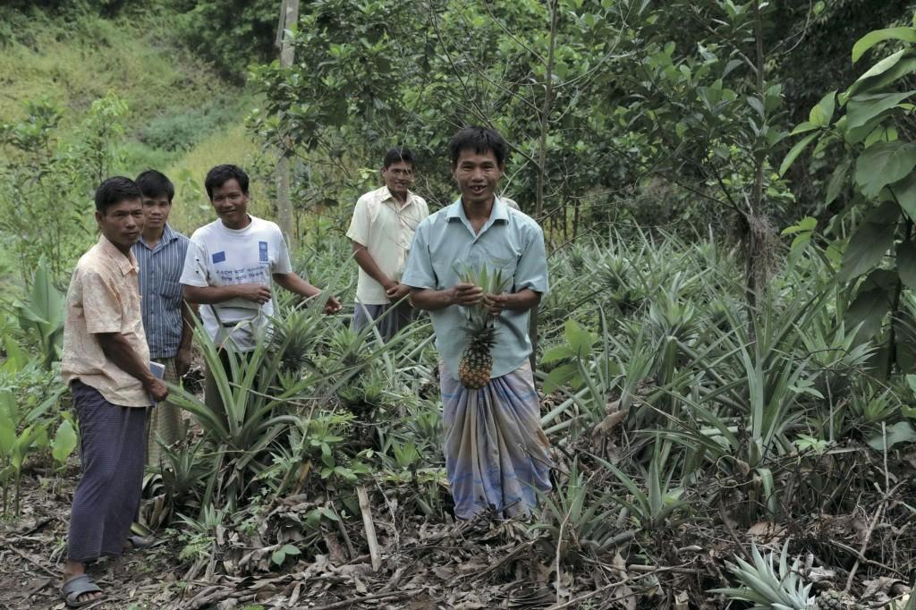 パインアップル農園を成功させた受益者